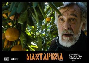 Mandarinia