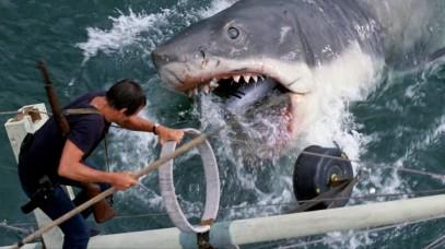 Τα σαγώνια του καρχαρία